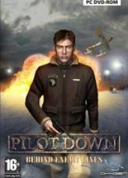 Трейнер для Pilot Down: Behind Enemy Lines [v1.0.8]